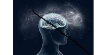 Топливо для мозга. Четыре простых способа улучшить память