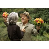 Названы способы сдержать старение мозга и потерю памяти