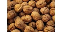 Орехи спасают от набора лишнего веса и повышают мужское либидо